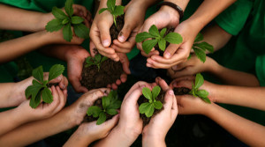 teaching-kids-ecology